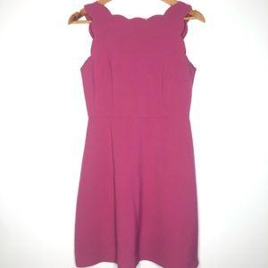 NWT | LOFT | Pink Scalloped A-Line Dress | Size 2